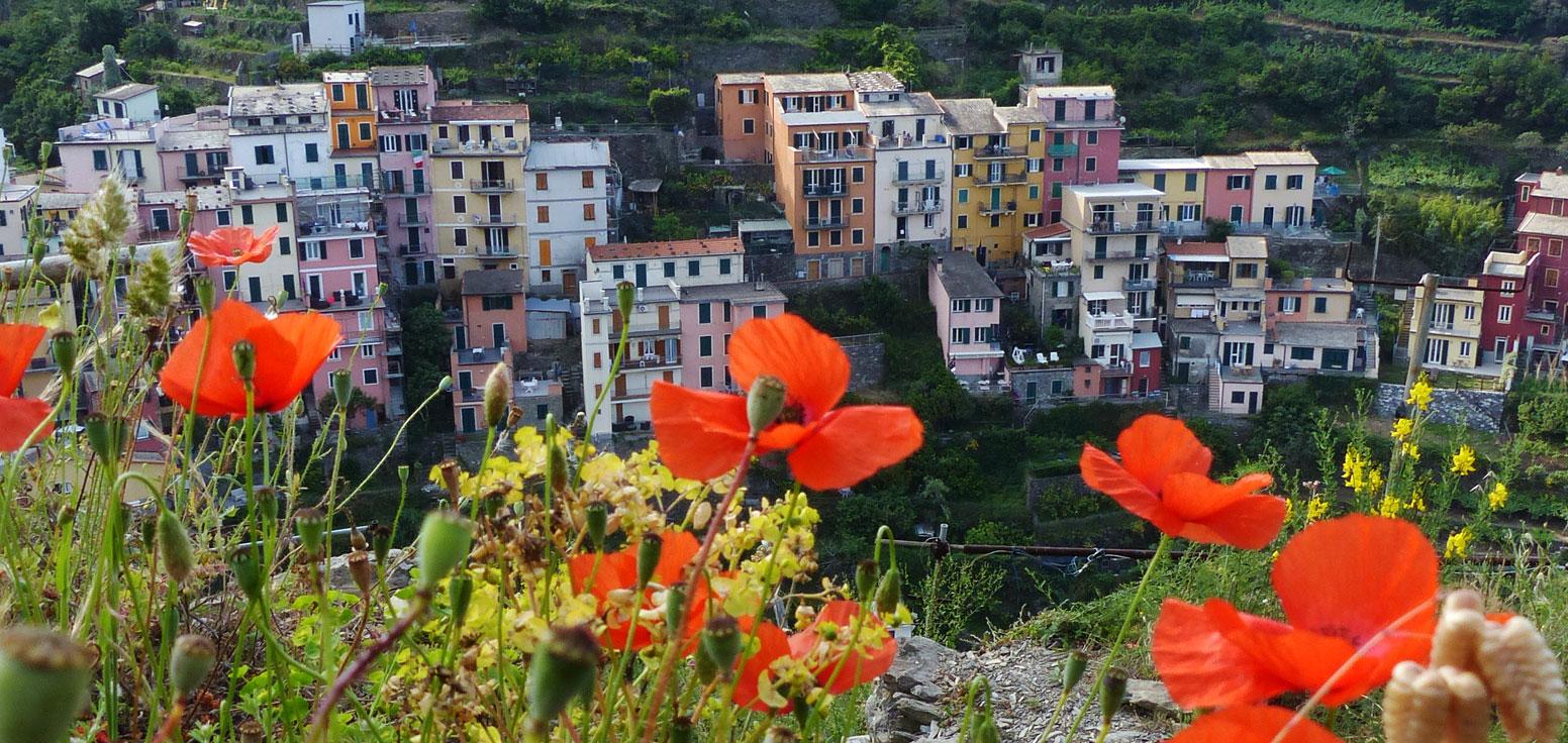 Cliffs above Manarola, Cinque Terre, Italy